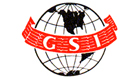 GSI / Geophysical Service Inc